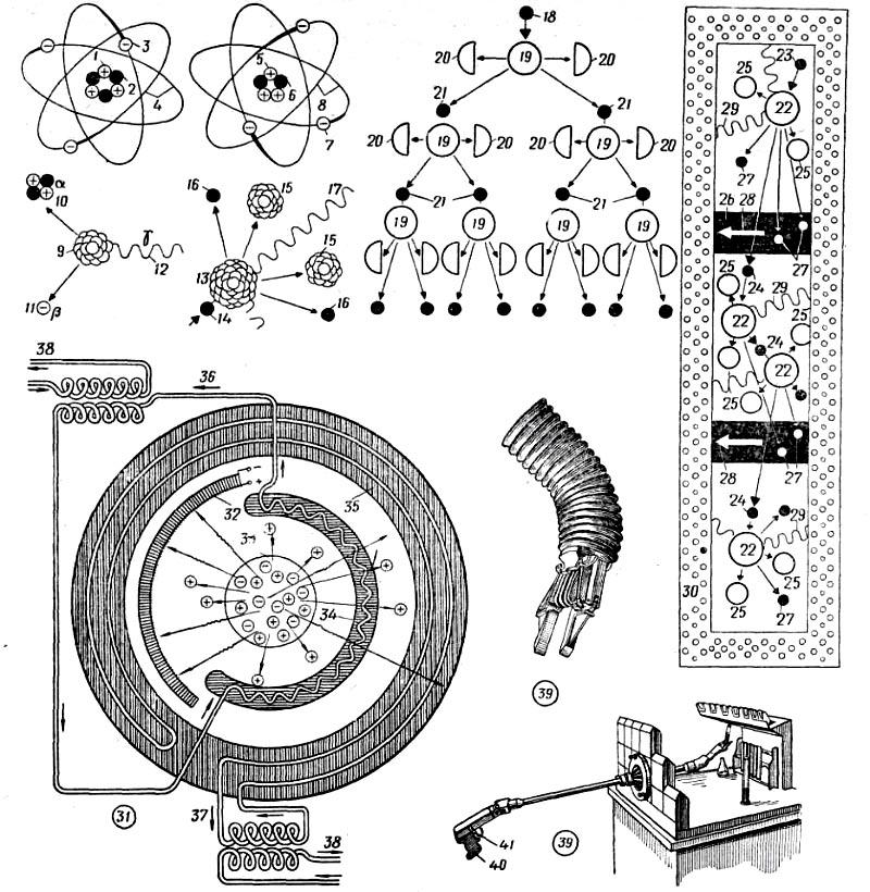 1-4 схема строения [модель]